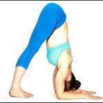 Dolphin Pose – Core Yoga Poses