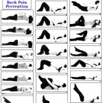 Simple Yoga Poses For Back Pain