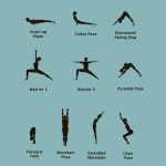 Yoga Poses For Beginners Pictures