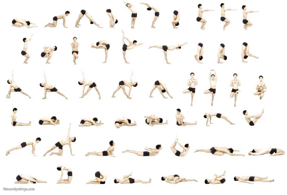 Senior Chair Yoga Sequence Yoga Zen