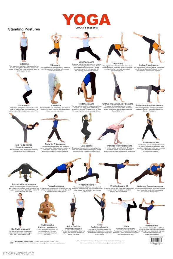 Yoga Asanas With Names In Telugu   Wajiyoga.co