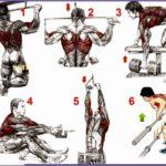4  Bodybuilding Exercises Pictures Training