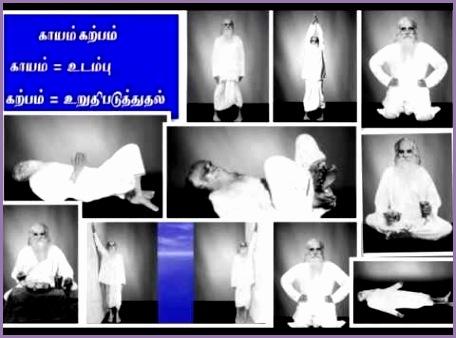 free kayakalpa yoga in tamil pdf  timefasr