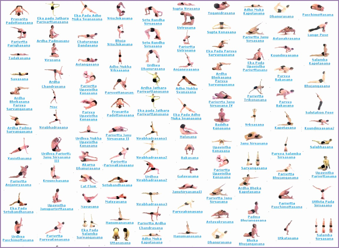 Yoga All Poses Vfeclu Beautiful Yoga Posses with Names