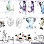 4 Arms Bodybuilding Exercises Chart