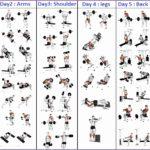 4 Bodybuilding Exercises Chart for Men