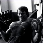 6 Arnold Schwarzenegger Bodybuilding Wallpapers Posters and Pictures