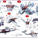 5  Bodybuilding Chest Exercises