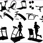 5  Fitness Vector