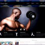 8 Fitness Websites Design