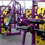 6 Planet Fitness Equipment