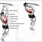 4 Lats Workout